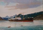 Midzomernacht in Narvik